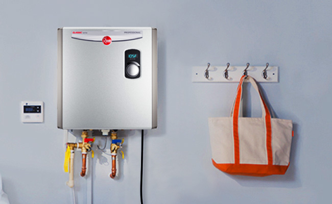 Rheem Rtex-18 Wiring Diagram from www.waterheatermag.com
